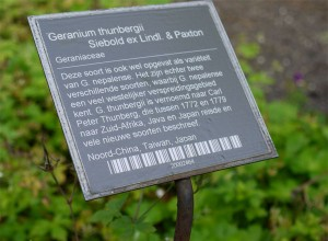 Example of plant label