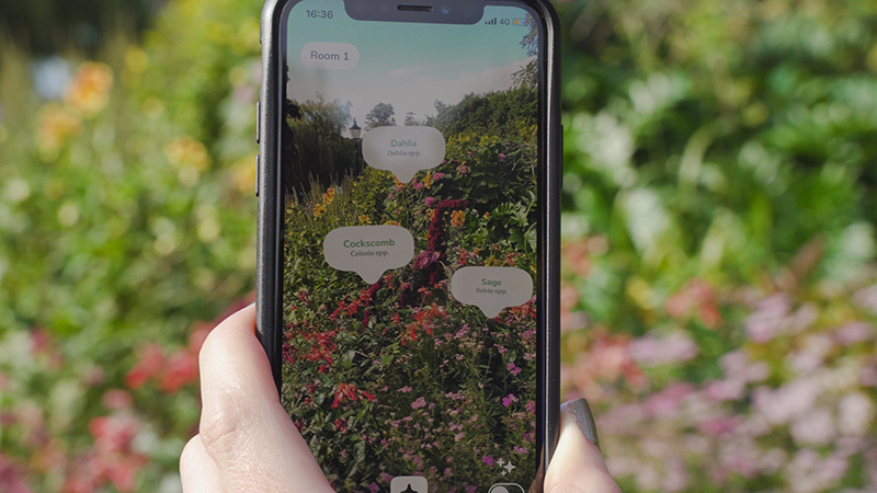 "Mobile phone displaying virtual plant labels from ""Candide Labels"", an iOS app which uses augmented reality technology to help identify plants, place labels, and find growing and care information"
