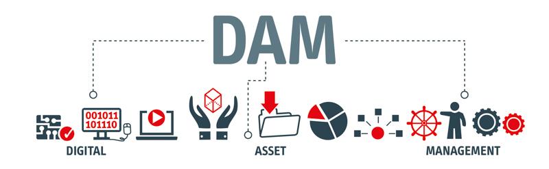 Digital Asset Management schematic