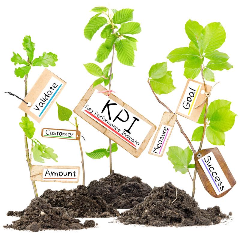 Seedlings showing examples of Key Performance Indicator keywords